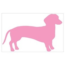 Pink Dachshund Dog Canvas Art