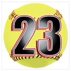23-Softball Poster