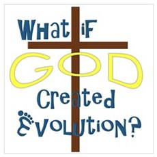 What if God Created Evolution? Poster