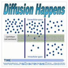 Diffusion Happens Poster