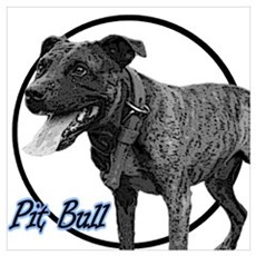 Brindle Bully Poster