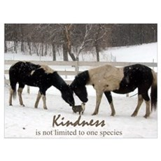 Kindness Canvas Art