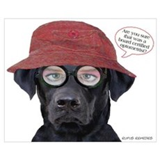 Black Lab Optometrist Canvas Art