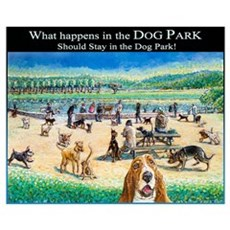 A Day at the Dog Park Framed Print