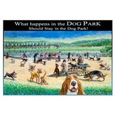 A Day at the Dog Park