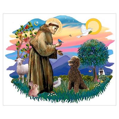 St Francis #2 / Poodle (ST-Ch) Poster