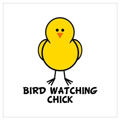 Bird Watching Chick Poster