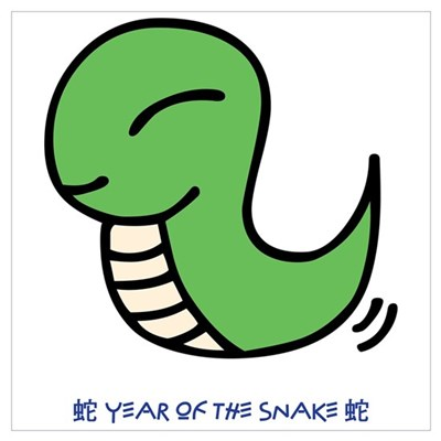 Year of the Snake Canvas Art