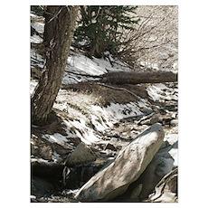 Alpine Stream Poster