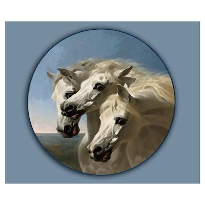 White Arabian Horses. Poster