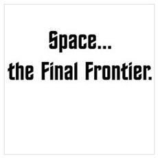 Space...The Final Frontier Poster