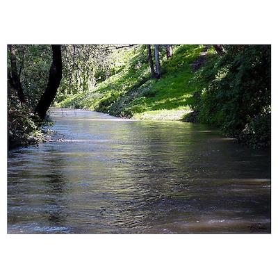 San Leandro Creek Poster