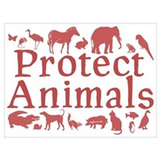 Protect Animals Canvas Art