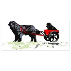 Puppy in Draft Cart Poster