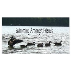 Swimming Amongst Friends Framed Print