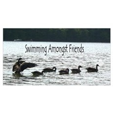 Swimming Amongst Friends Poster