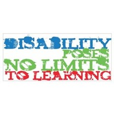 Disability No Limits Poster