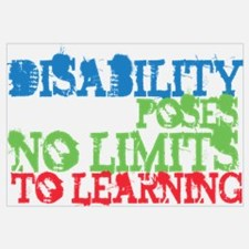 Disability No Limits