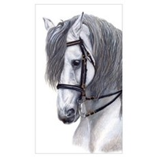 Large Andalusian Canvas Art