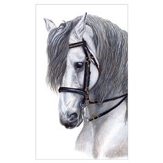 Large Andalusian Poster