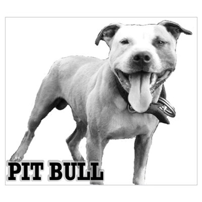 Happy Pit Poster