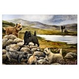 Cairn terrier Framed Prints
