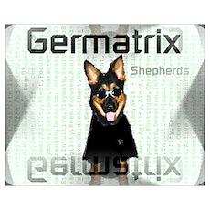 Germatrix Shepherds Poster