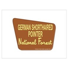German Shorthaired Pointer Poster