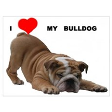 BULLDOG SMILES Canvas Art