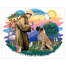 St Francis #2/ Bull Mastiff Poster