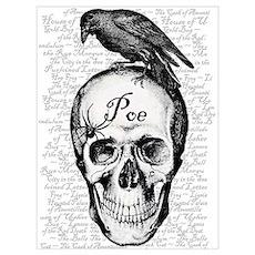 Raven Poe Poster