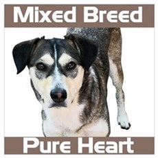 Mixed Breed - Pure Heart Poster