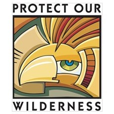 Protect Our Wilderness Poster