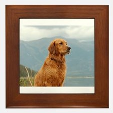 Golden Retriever Lake Framed Tile
