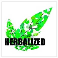 Herbalized Colored Canvas Art