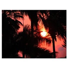 """""""Tropical Sunset"""" Poster"""
