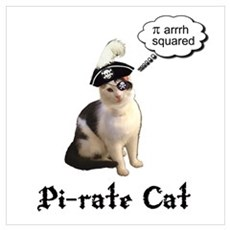 Pi-rate Cat Poster