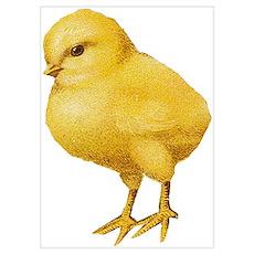 Vintage Easter Chick Poster
