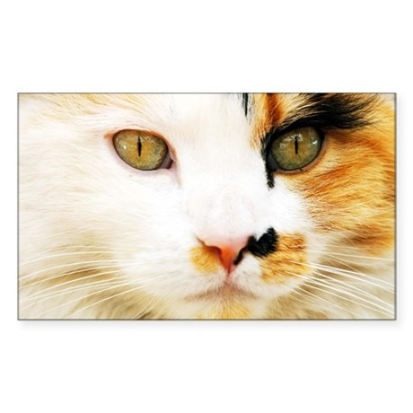 Calico Cat Sticker (Rectangle 50 pk)