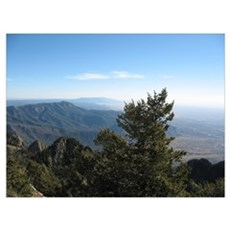 Mountain Top 1 Poster