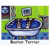 Boston terriers in bathtub Framed Prints