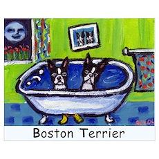 BOSTON TERRIER two in bath de Poster