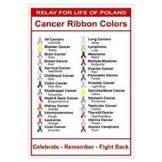 Relay For Life Cancer Ribbon Colors Framed Print