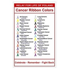 Relay For Life Cancer Ribbon Colors Poster