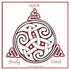 Celtic Spiral Poster