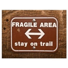 Fragile Area Poster