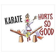 Karate Duck 3 Poster