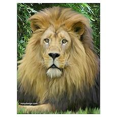 Lion - close up Poster