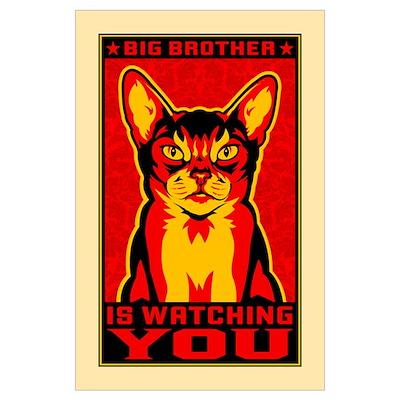 CAT - Big Brother Propaganda Poster
