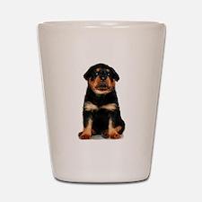 Rottweiler Puppy Shot Glass